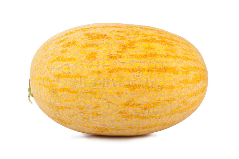 Melon. Whole melon isolated on white background stock photo