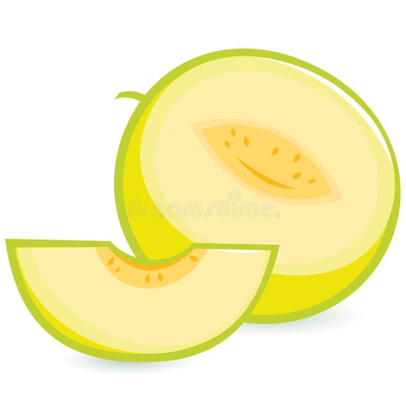 Melon. A whole and a sliced melon stock illustration