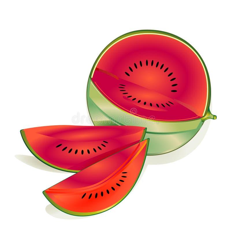 melon woda ilustracja wektor