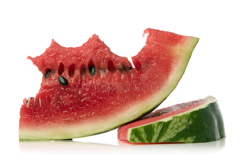 melon wody obrazy stock