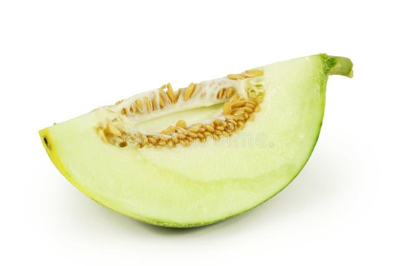 melon zarabiający netto fotografia royalty free