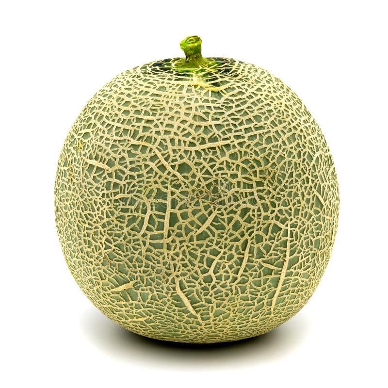 Melon zieleń odizolowywająca na białym tle obrazy stock