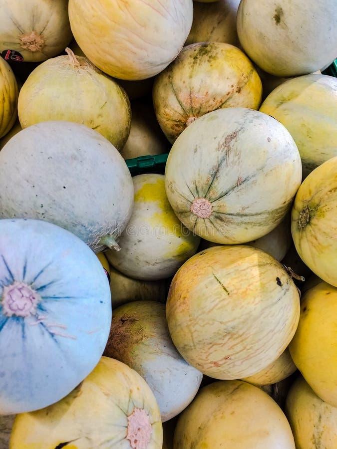 MelonCucumismeloen L , är 1753 en klättraväxt av Cucurbitaceaefamiljen [1] Uttrycksmelon indikerar både den frukten royaltyfri foto