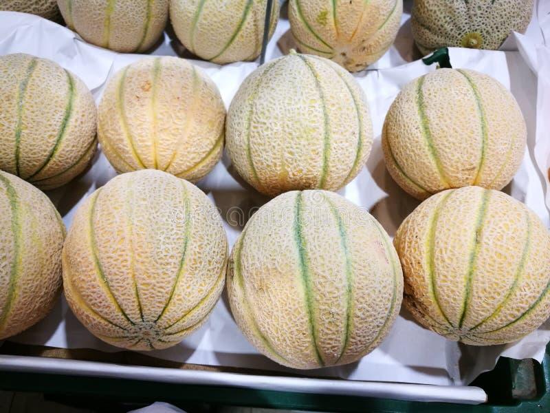 Melone πεπονιών στοκ εικόνες