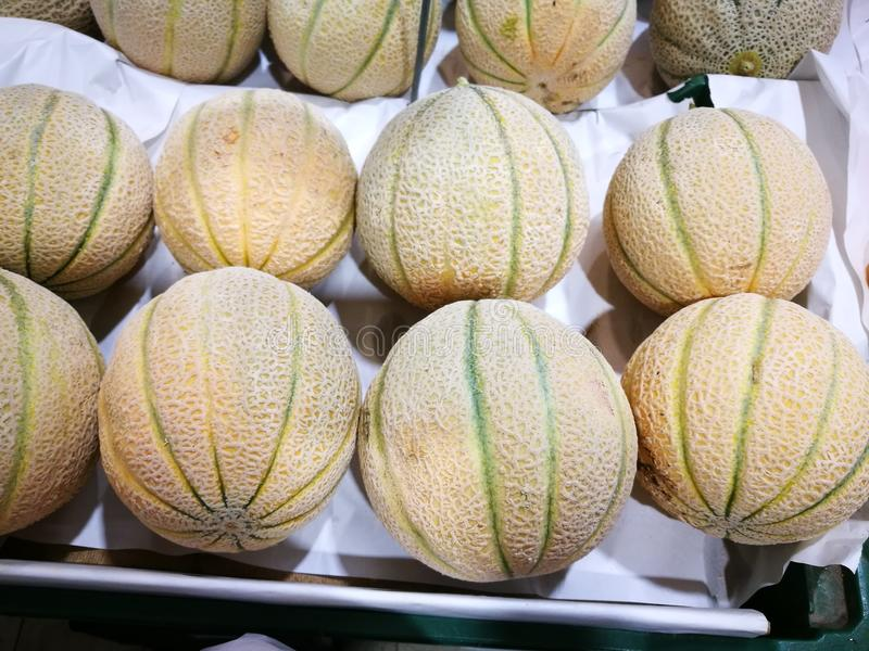 Melone канталупы стоковые изображения