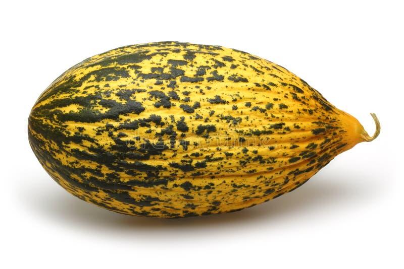 Melone stockfotografie