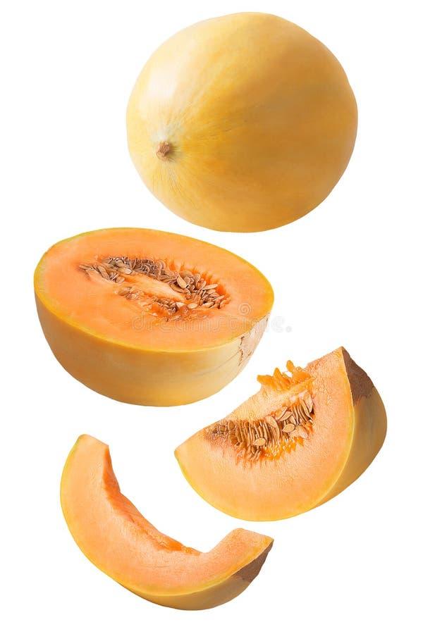 Melone affettato fresco di caduta isolato su bianco fotografia stock libera da diritti