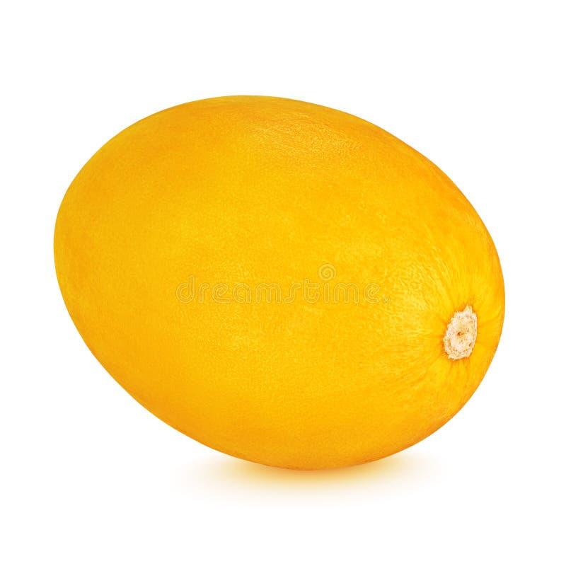 Melone color giallo canarino isolato su fondo bianco immagini stock libere da diritti