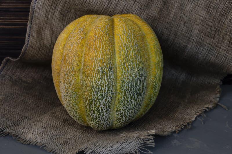 Melone con scanalature longitudinali immagini stock libere da diritti