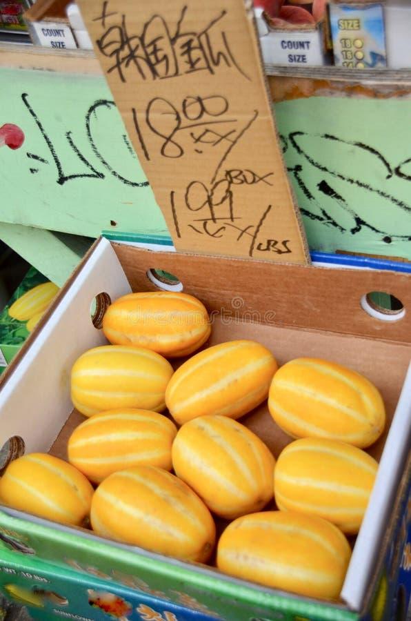 Melone coreano immagine stock libera da diritti