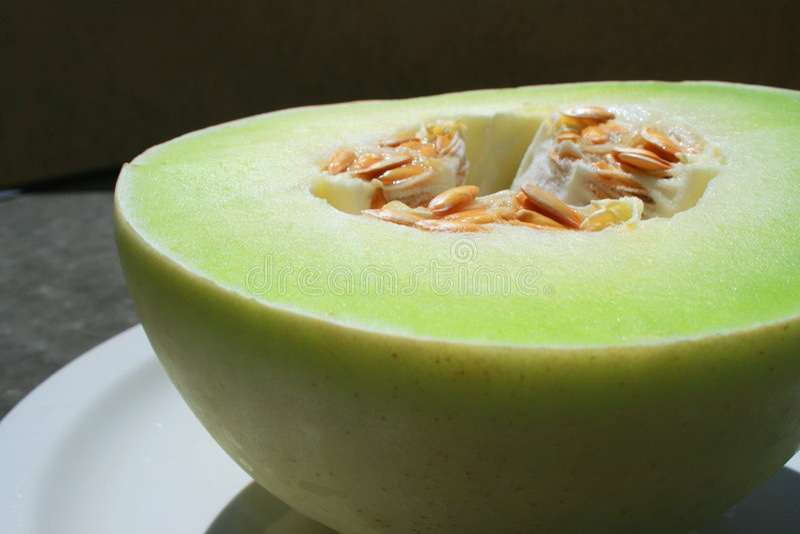 Download Melone di melata fotografia stock. Immagine di piastra - 7316604