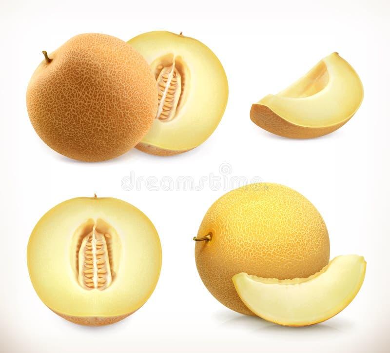 melone Ganzes und Stücke Süße Frucht Ikonen des Vektors 3d eingestellt lizenzfreie abbildung