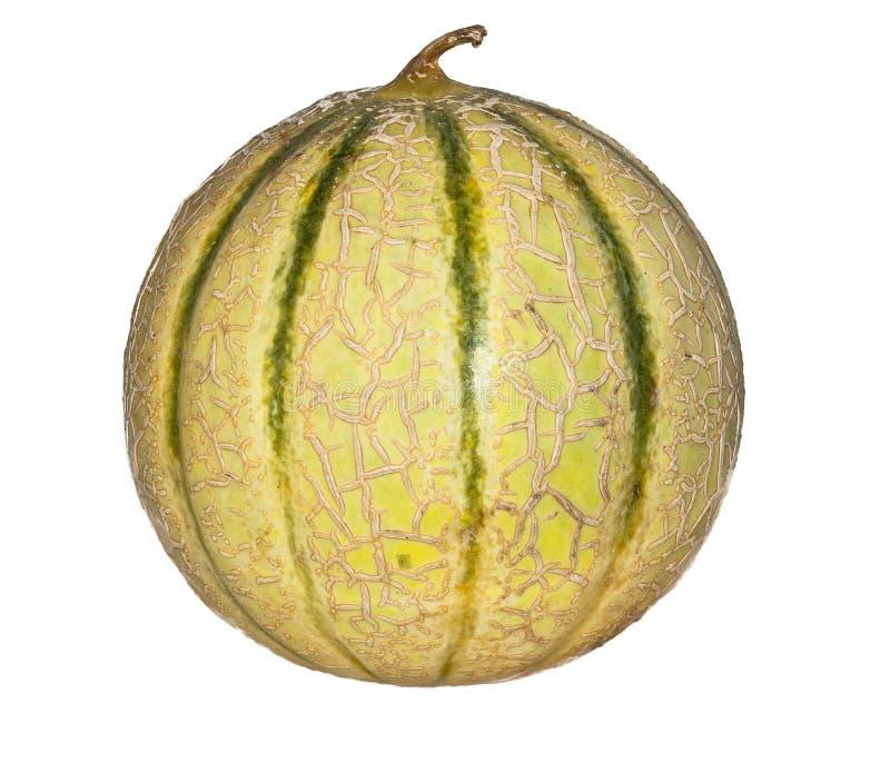 Melone lokalisiert auf einem weißen Hintergrund stockbild