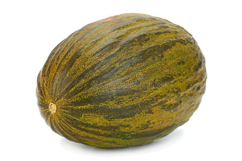 Melone Piel de sapo di Spinish immagini stock libere da diritti
