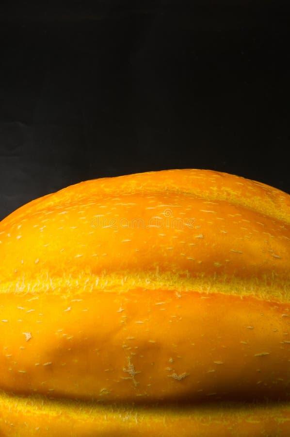 Melone sugoso maturo immagini stock libere da diritti
