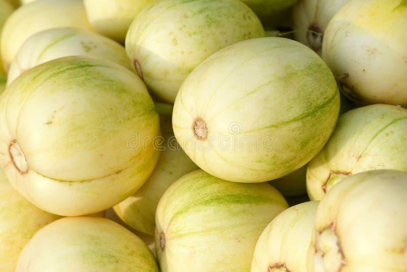 Melonen lizenzfreie stockfotografie