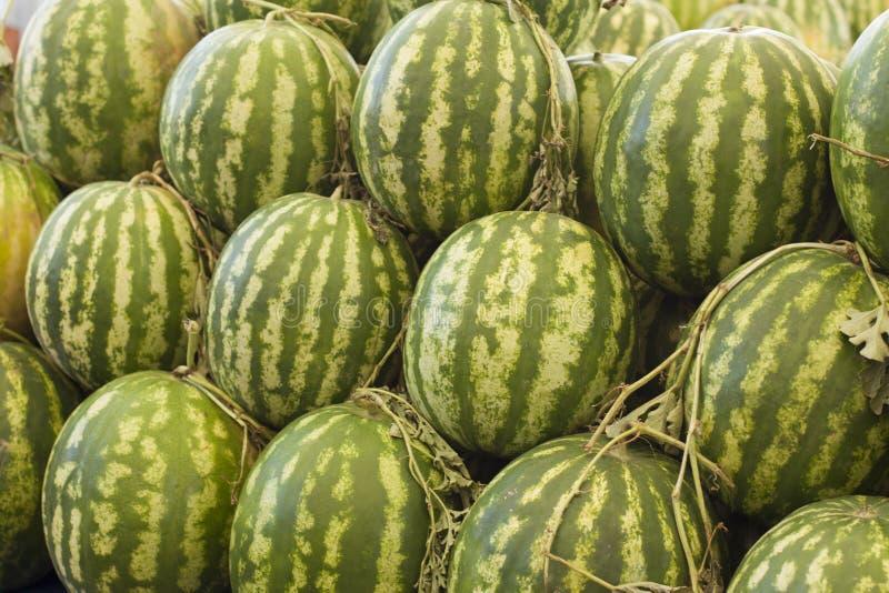 Melonen, die in einem Markt verkauft werden lizenzfreie stockfotos