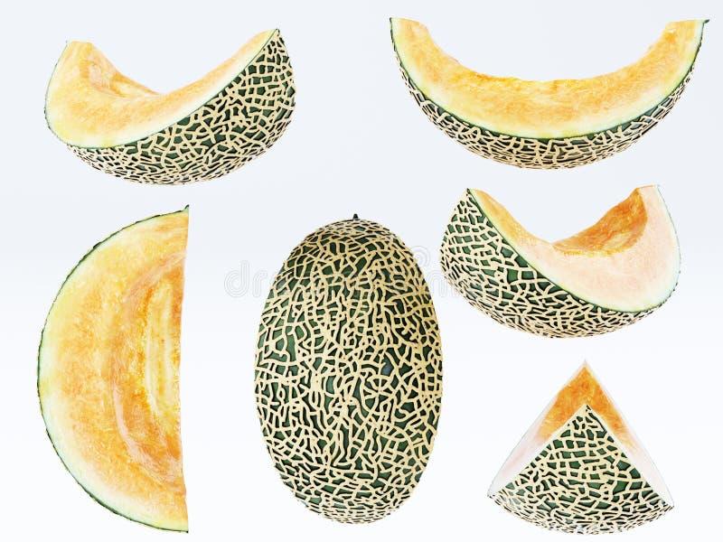 Melonen-Sammlung schnitt die Stücke, die auf weißem Hintergrund lokalisiert wurden vektor abbildung