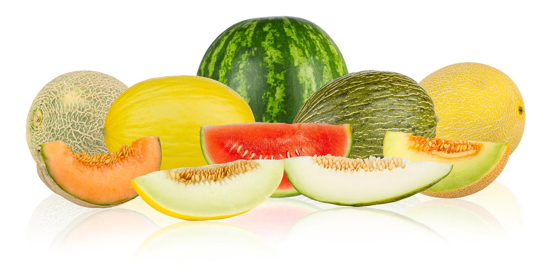 Melonenpanorama lizenzfreie stockbilder