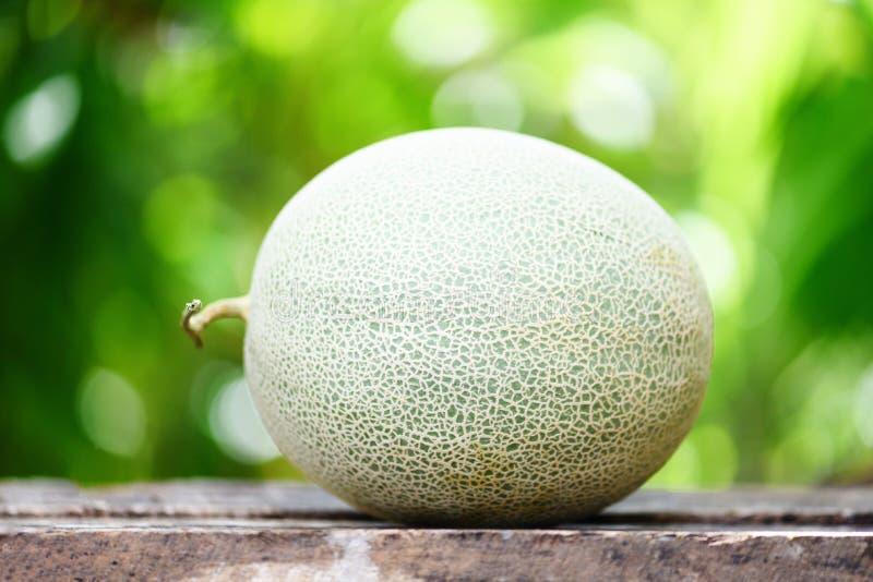 Melones frescos o cantalupo verde del melón en la tabla y la naturaleza de madera fotografía de archivo
