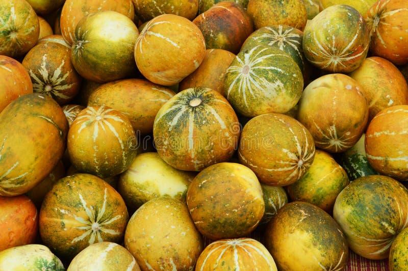 Download Melones Tailandeses Del Cantalupo Foto de archivo - Imagen de vitamina, ingrediente: 42429138