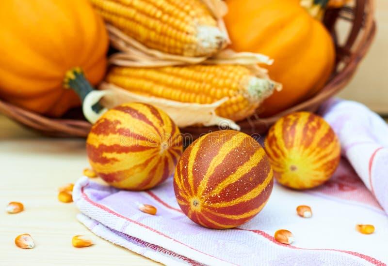 Melones vietnamitas que ponen en la tela de lino delante de la cesta con las calabazas y el maíz de otoño fotografía de archivo