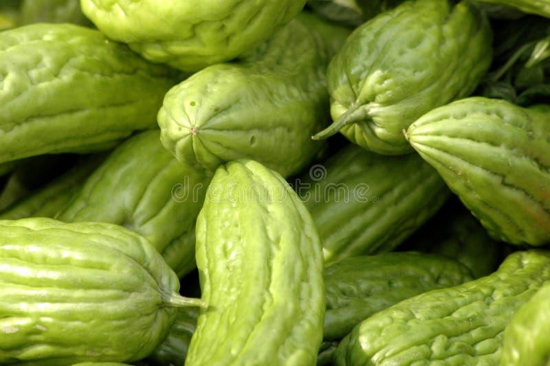 Meloni amari immagini stock libere da diritti