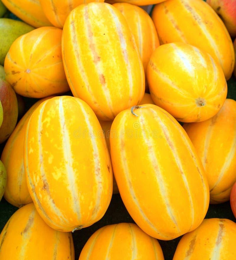 Meloni coreani al mercato degli agricoltori in California U.S.A. fotografia stock