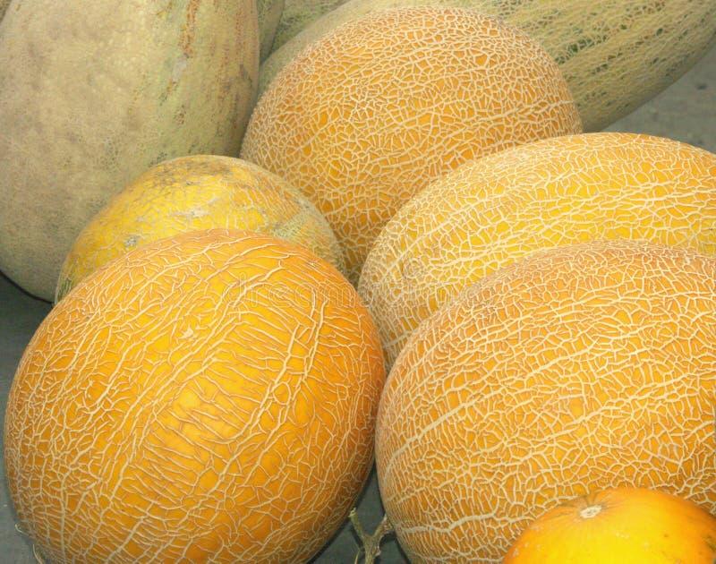 Meloni su un contatore fotografie stock libere da diritti