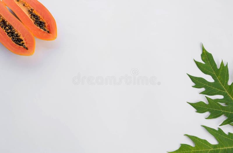 Melonowa liścia teksta rama dla twój teksta obraz stock