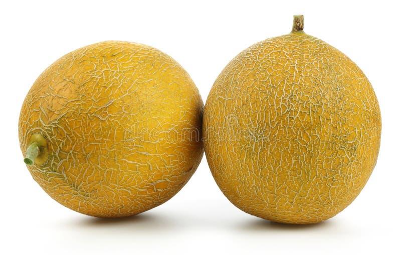 Melonowe owoc odizolowywa? na bielu obraz royalty free
