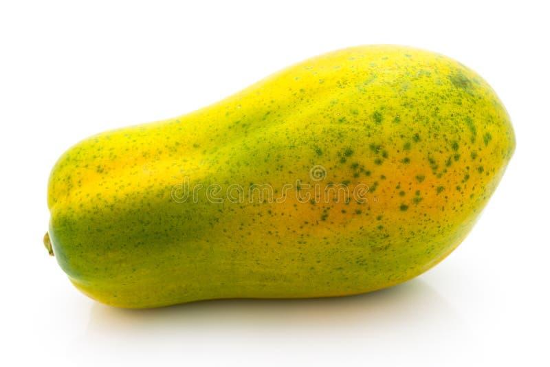 Melonowiec obraz stock