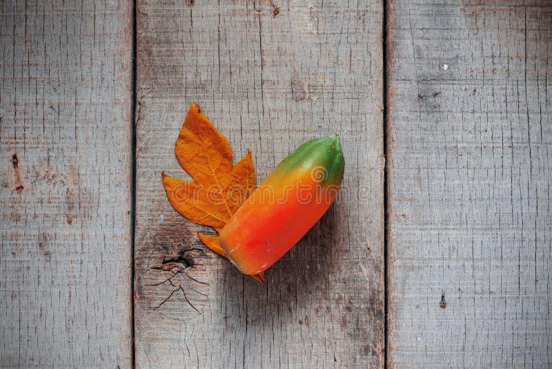 Melonowiec na drewnie brudny zdjęcia stock
