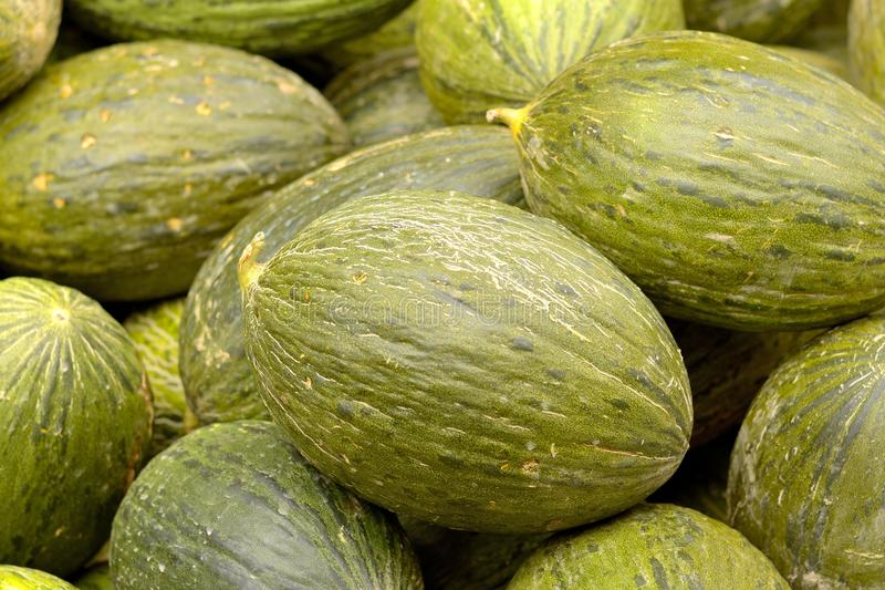 Melons images stock