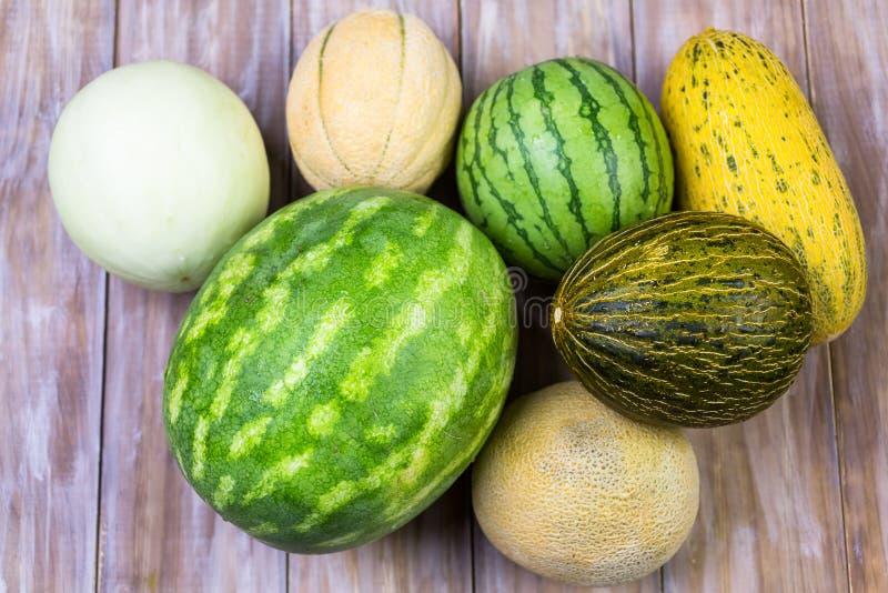 melons fotografia de stock