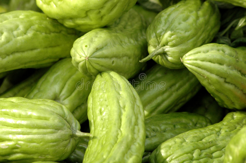 Melons amers images libres de droits