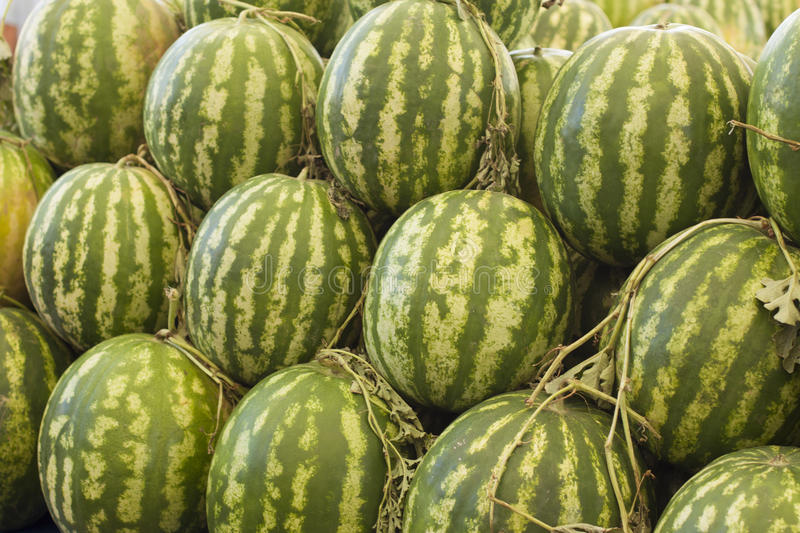 Melons being sold in a market royalty free stock photos