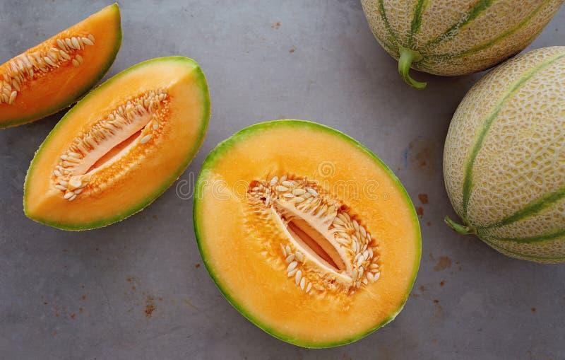 Melons de cantaloup image stock