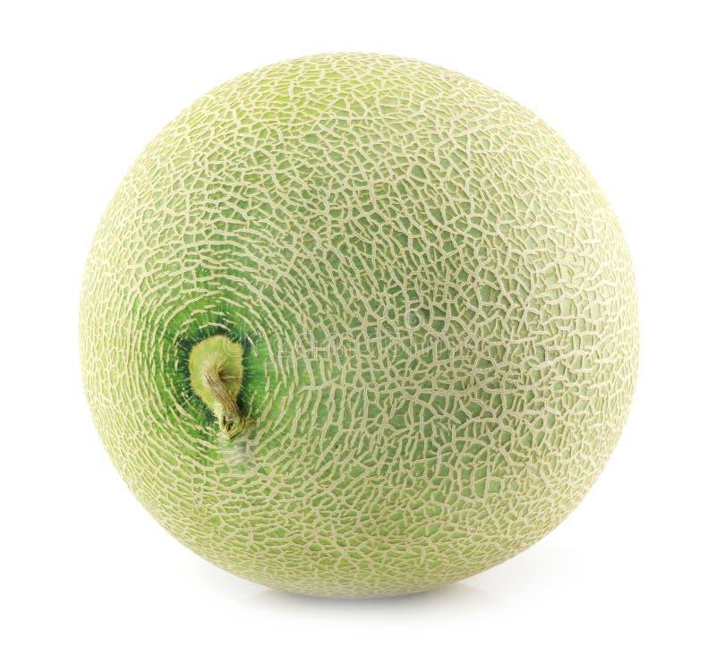 Melons de cantaloup d'isolement photo libre de droits