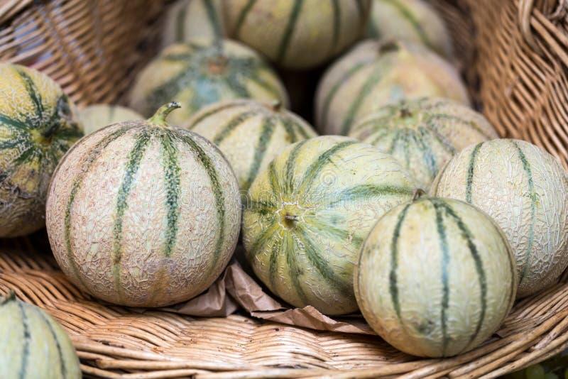 Melons de cantaloups photographie stock libre de droits