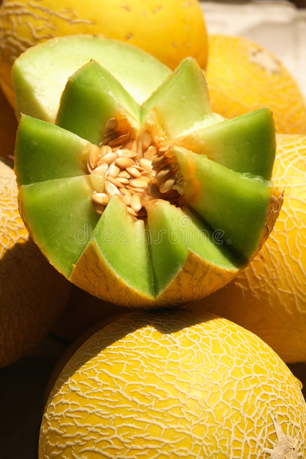 Melons at the farmers� market royalty free stock photos