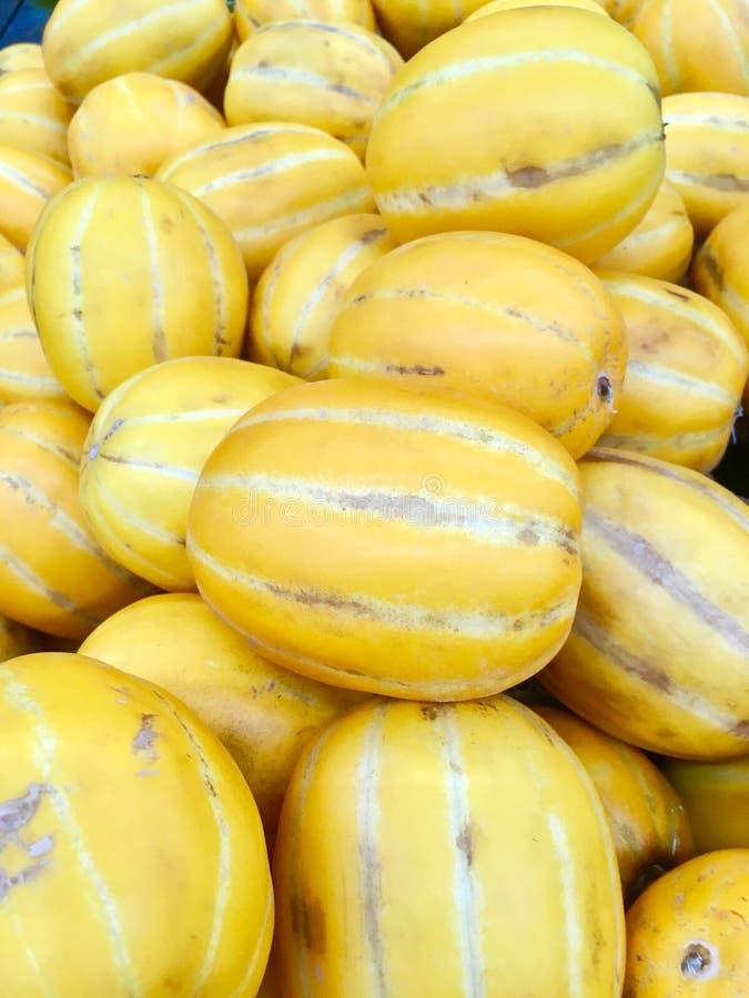 Melons jaunes coréens photos libres de droits