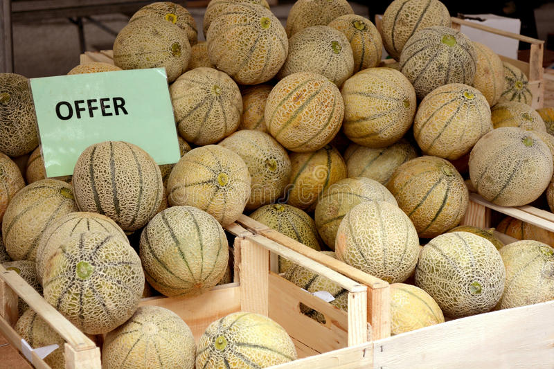 Melons for sale on market royalty free stock images