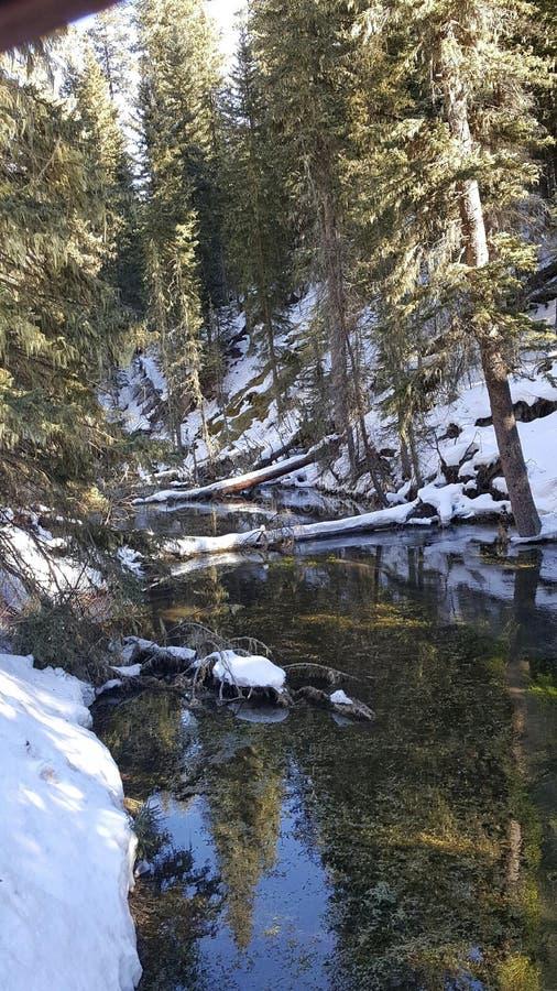 Melt зимы стоковое фото
