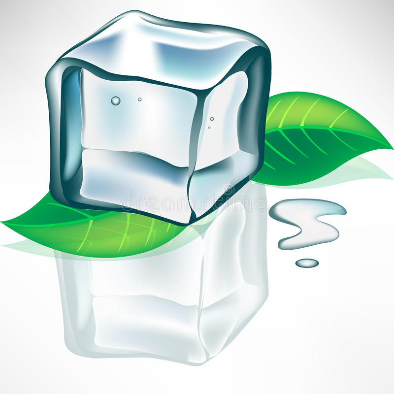 Download Melting Ice Cube With Leaves Royalty Free Stock Photo - Image: 21619975
