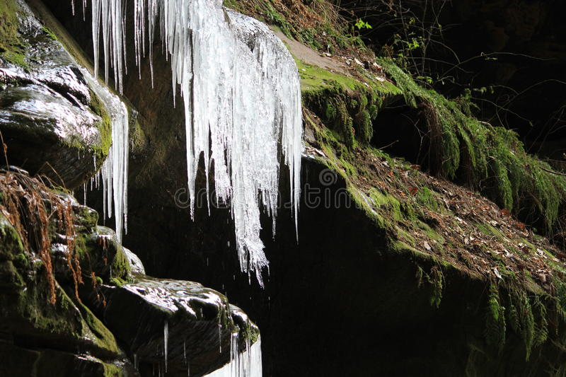 Melting icicles on rock ledge royalty free stock images