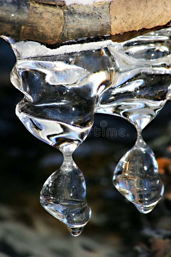 Melting Icicles royalty free stock photography