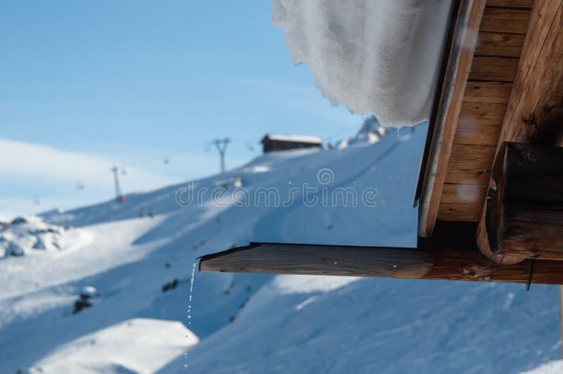 Melting snow stock photography