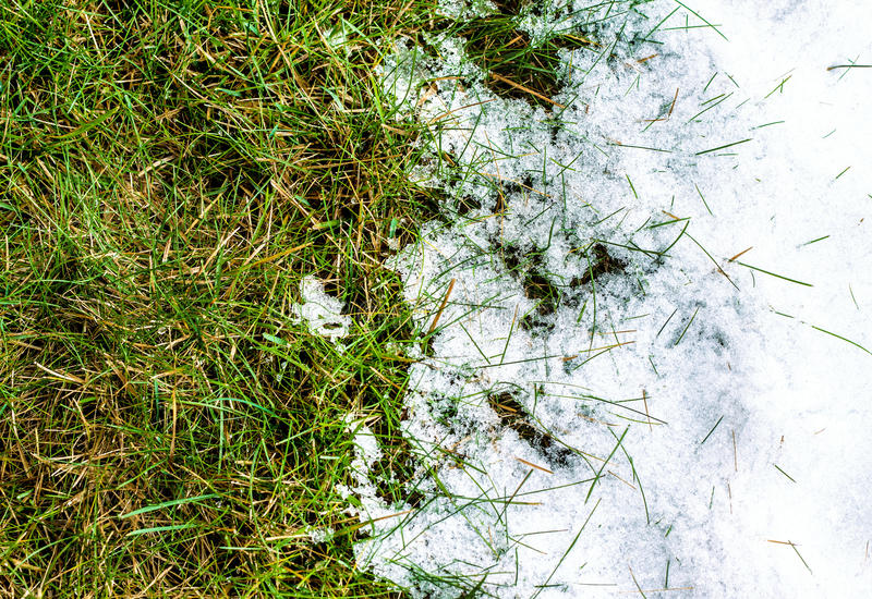 Melting snow on grass - between winter and spring concept stock photos