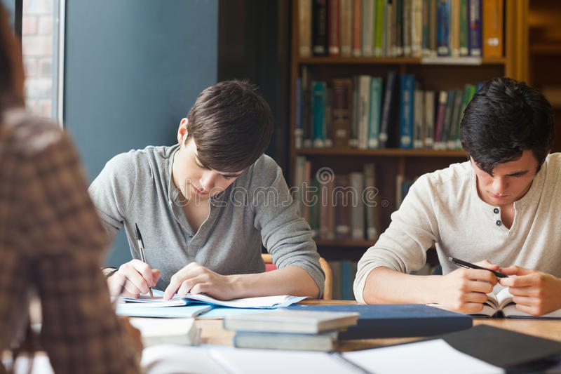 Members of a study group working stock images